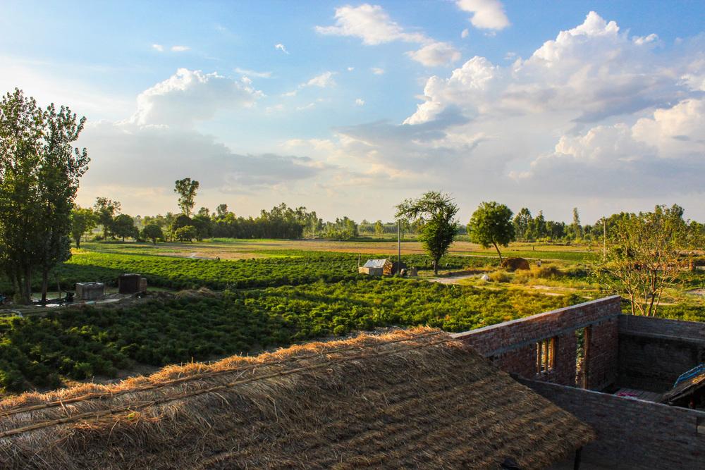 11+-+Farm+land.jpg