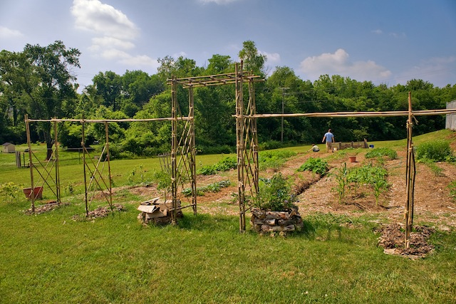 A picture of the garden in 2010, one year after we began our agricultural efforts on our property at our headquarters.