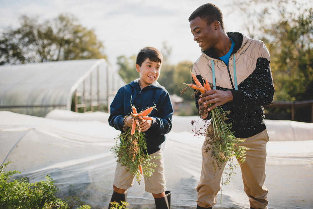 Students at the Academy for G.O.D. harvest carrots during gardening class.  Student lunch at the Academy is supplemented by produce grown in the garden.