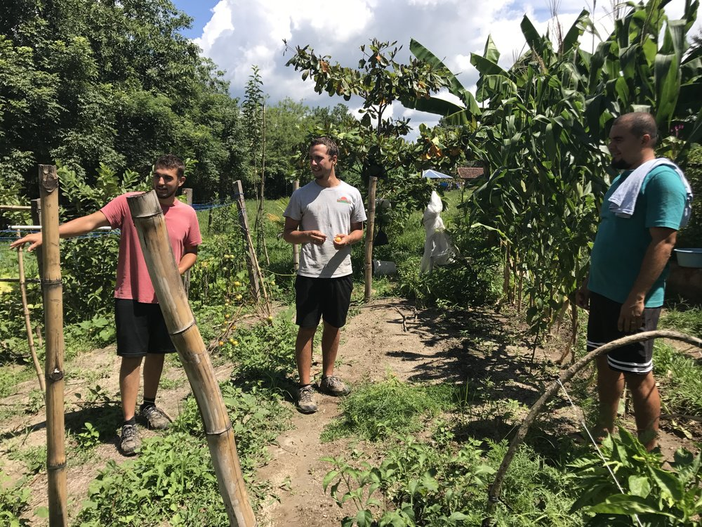 What you see here is more than a few guys chatting in a garden.  It's a picture of the friendship and bond developing as we work towards the ever-important goal of food production on our El Salvador campus.