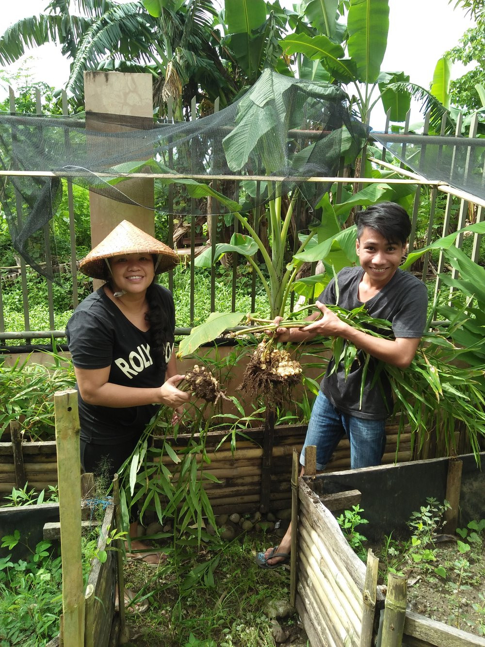 Food Production Intern, Jairus Tumamak, works with Rina Miller to weed the raised garden beds at Tahanan. There are currently 400 sq ft of garden beds at Tahanan producing a variety of table vegetables including peppers, green beans, leafy greens, okra, garlic, ginger and more.