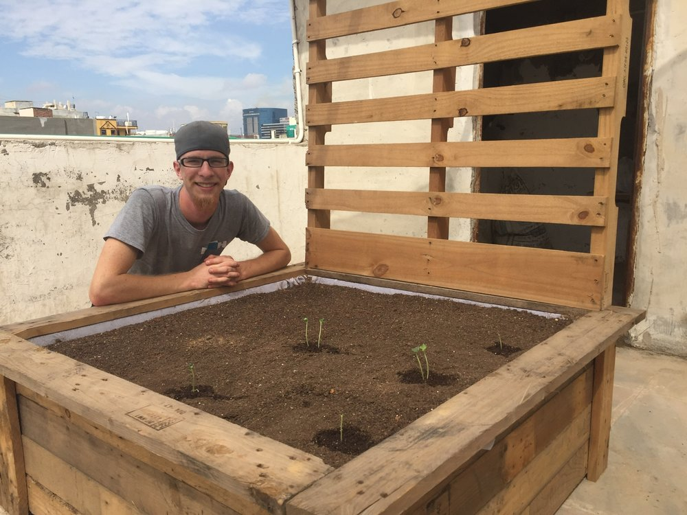 Phase 1 completed! With garden boxes built, soil prepared and seedlings transplanted, the summer immersion team left behind a healthy young rooftop garden. They gained valuable experience in executing a small scale project cross-culturally.