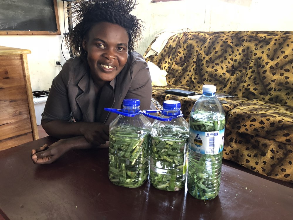 Through Grace's health care seminar, the women harvested lemongrass and included it in bottles with water and vinegar to serve as a natural cleaning spray in place of the ones sold in their stores, wrought with harmful chemicals.