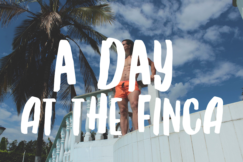 A Day at the Finca