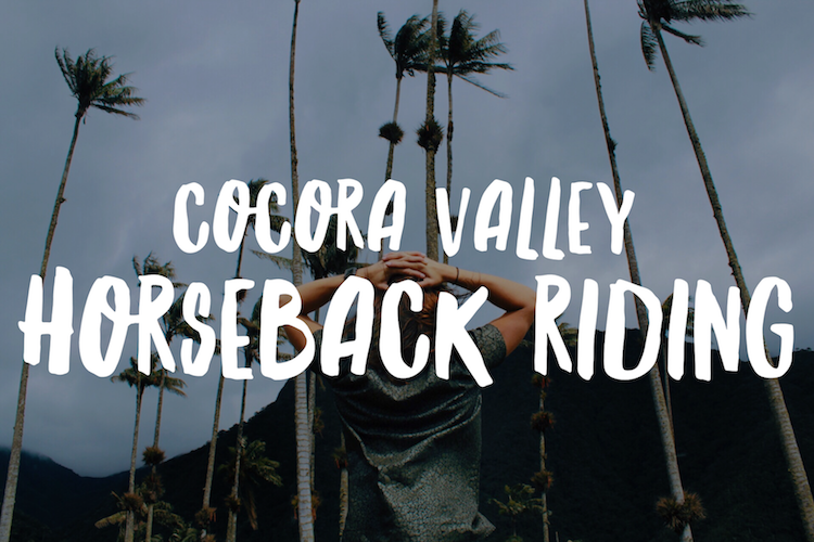 Cocora Valley Horseback Riding