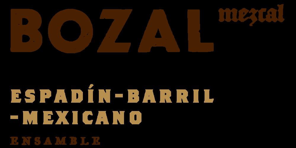 Bozal_Logo_EBM.png
