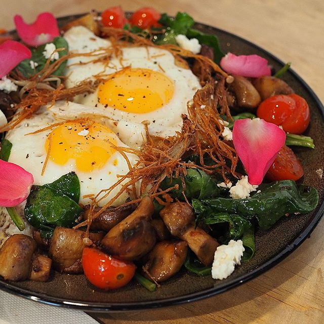 Yup back to my favourite shrooooms again @coconutestateeatery . . . . #morning #delicious #food #foodpics #yummy #foodgasm #foodphotography #foodporn #adelaide #adelaideeats #adelaidefood #sacafe #breakfast #foodie #foodblogger #daisyumblog #eggs #yum #healthy #healthyfoodshare #fresh #mushrooms