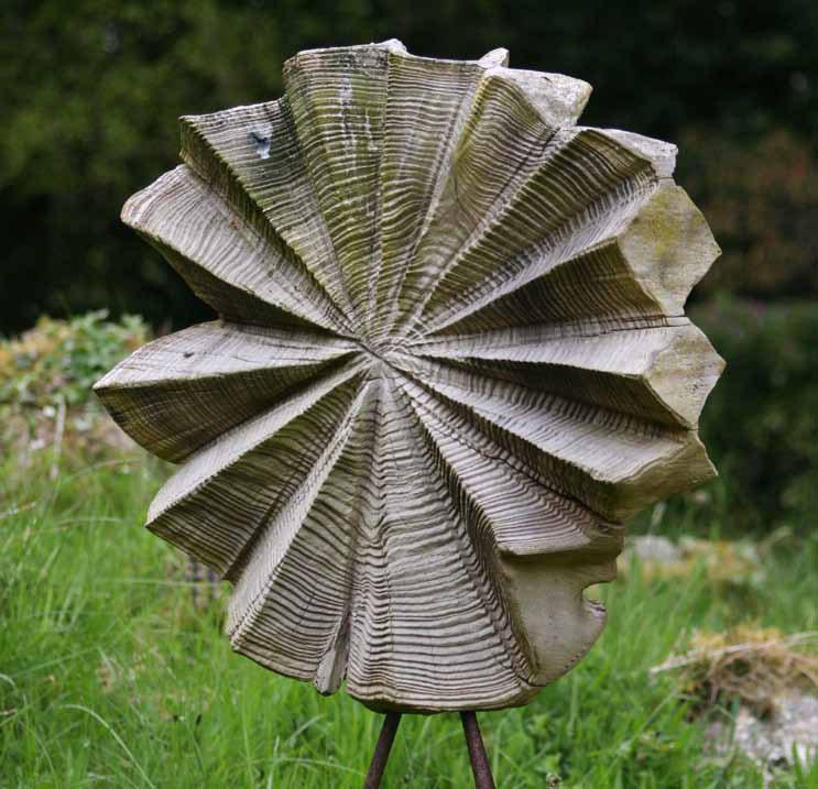 'Cedar Lily'