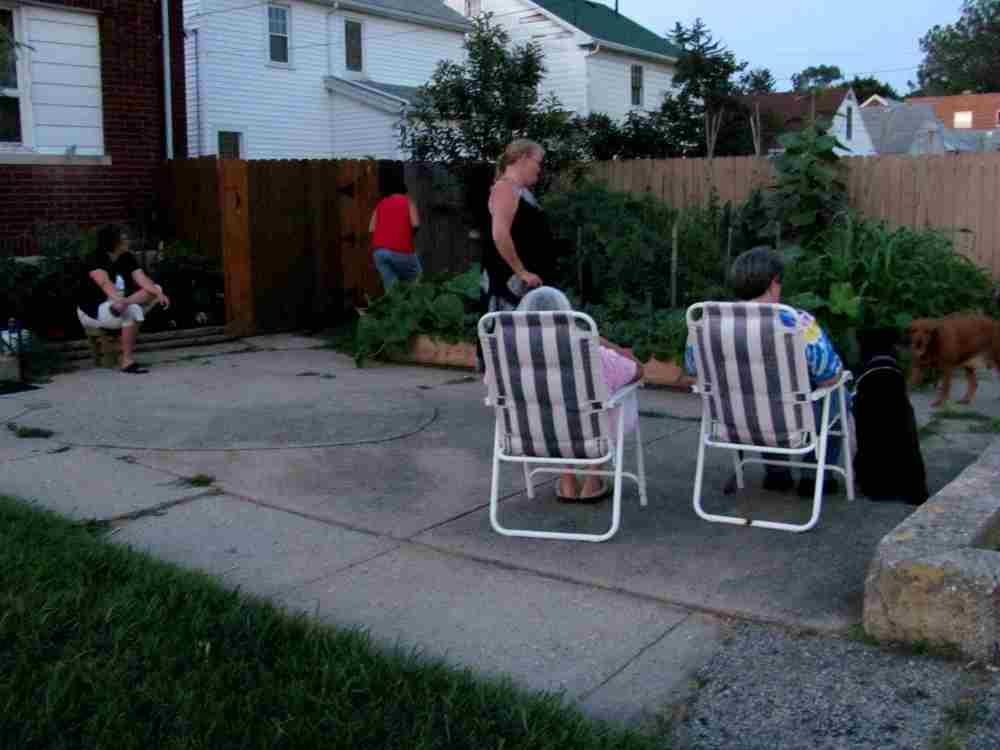 watchin the garden