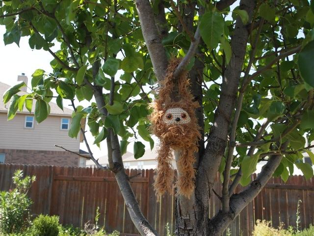 sloth dangling from tree.jpg
