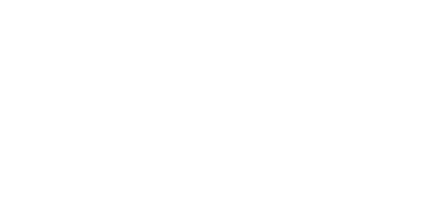 Western Illinois Firearms Instruction L.L.C.