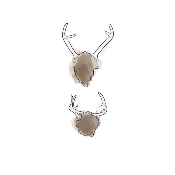 Feb12_antlers.png