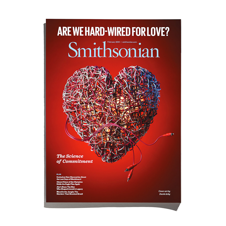 David Arky_Smithsonian Heart.jpg