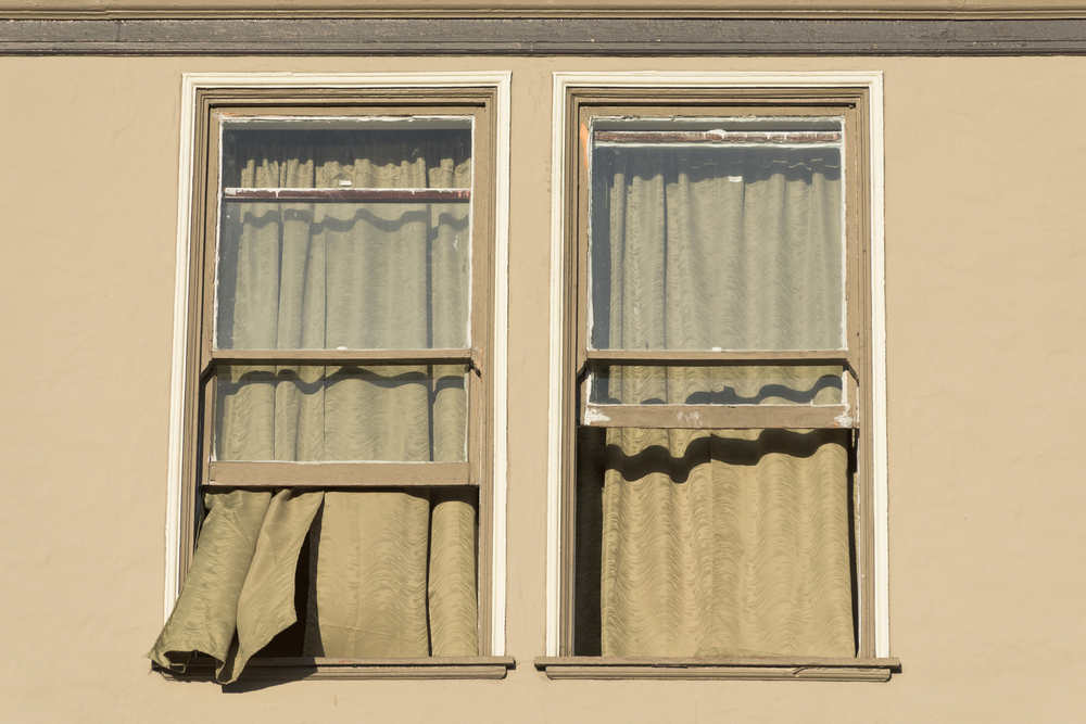 window-14.jpg