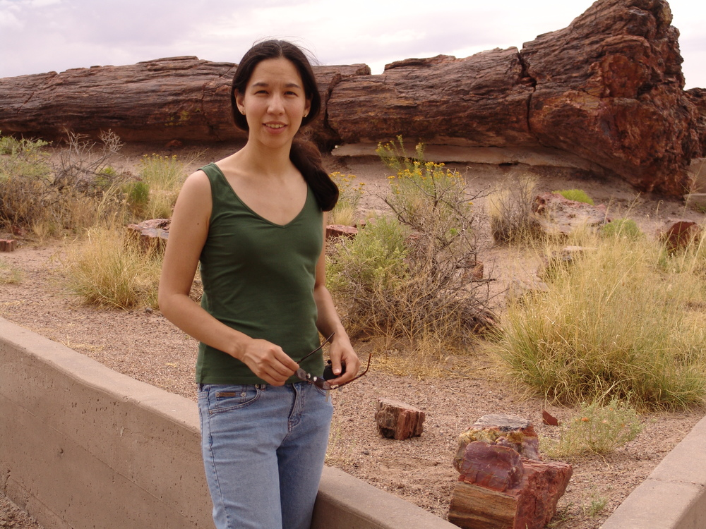 on the road from the midwest to LA in 2005, Petrified Forest National Park (AZ) [ah, even squinting in the sun... how young I was once]