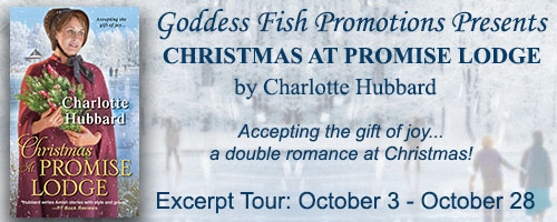 Excerpt_TourBanner_ChristmasAtPromiseLodge.jpg