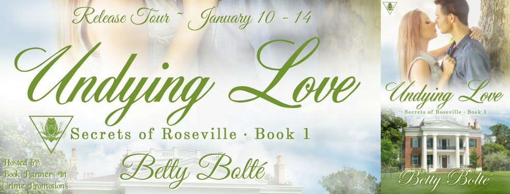 Undying Love Release Tour Banner.jpg