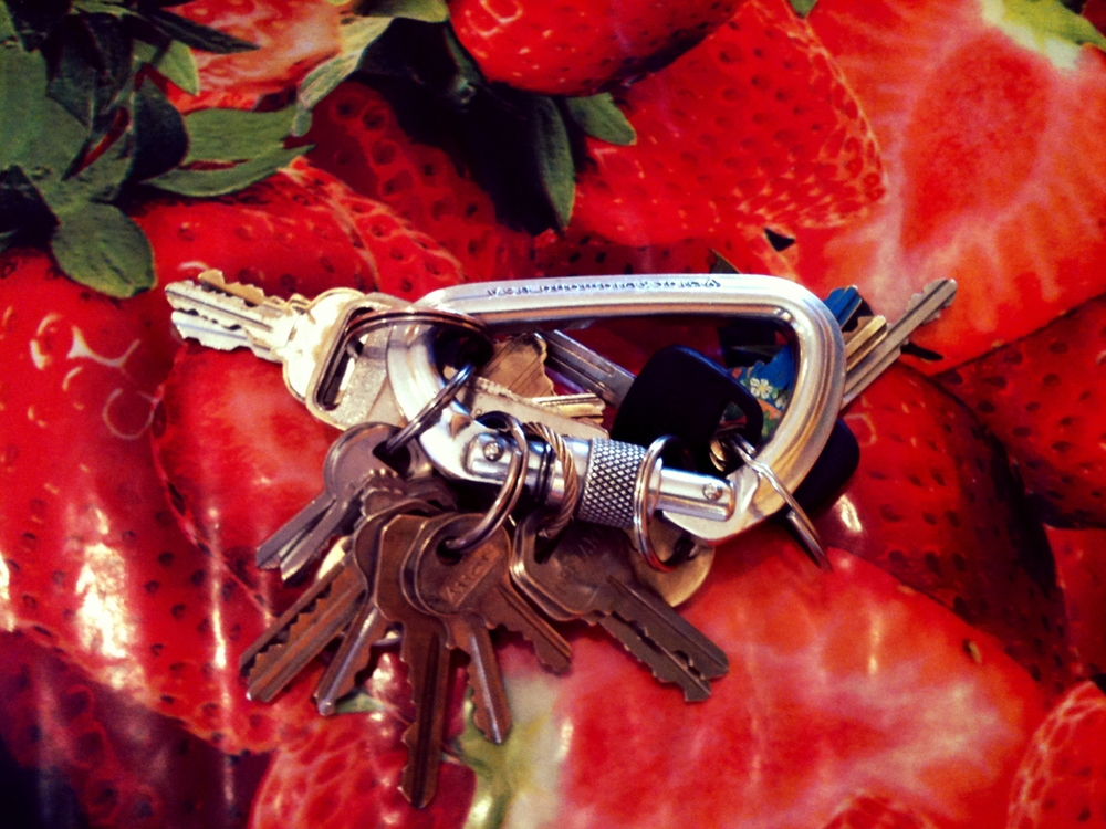 Copy of Keys on Berries.jpg