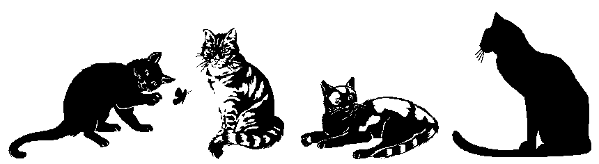 a black-and-white drawing of four cats in a row, striking various poses