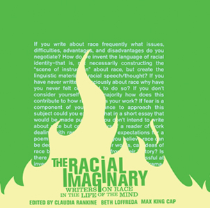 Image: Cover art for  The Racial Imaginary