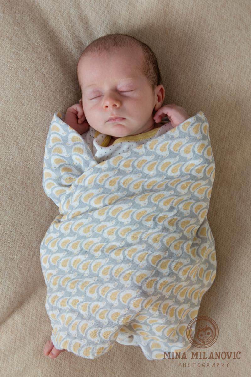 Twickenham Newborn and Baby Photographer