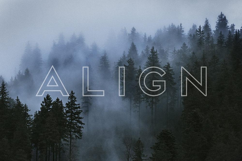 align banner4.jpg