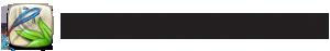 Microsoft Surface Lagoon logo