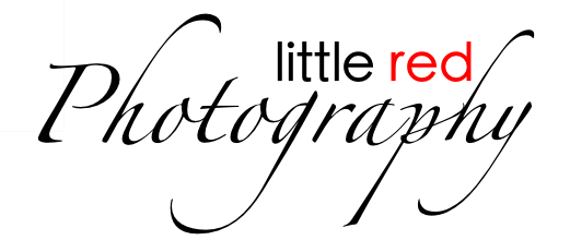 Little Red Photography