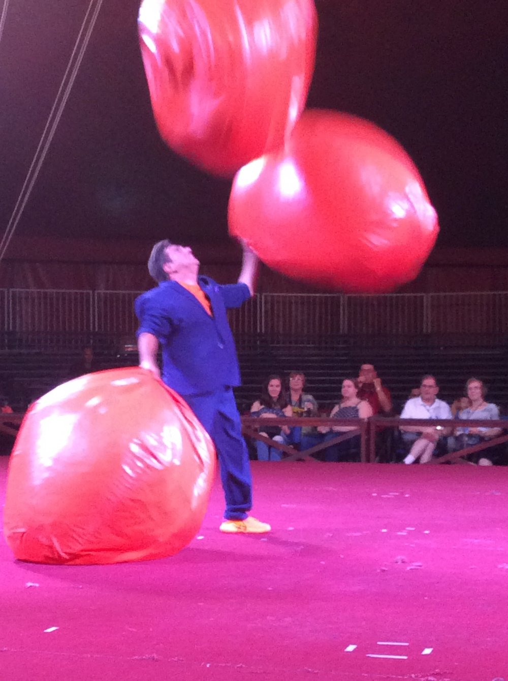 Michael Goudeau Juggling in the Circus