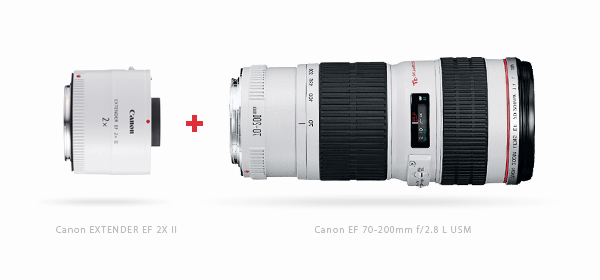 Canon400mm.jpg