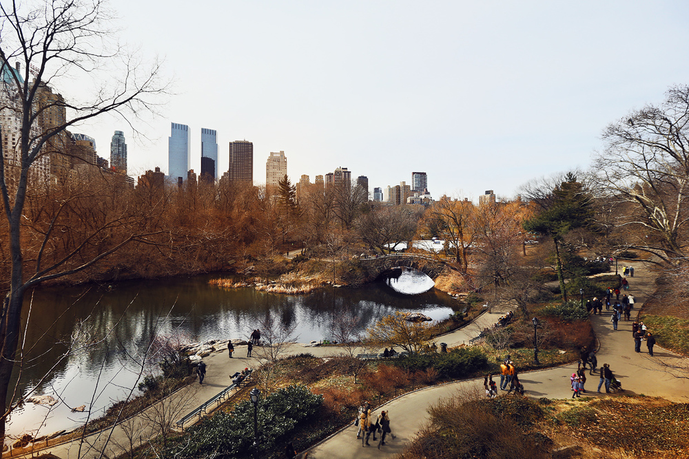 Central Park, New York City. Canon 5D Mark III + Canon EF 16-35mm f/2.8L 1/400 sec, f/5.0, ISO 200