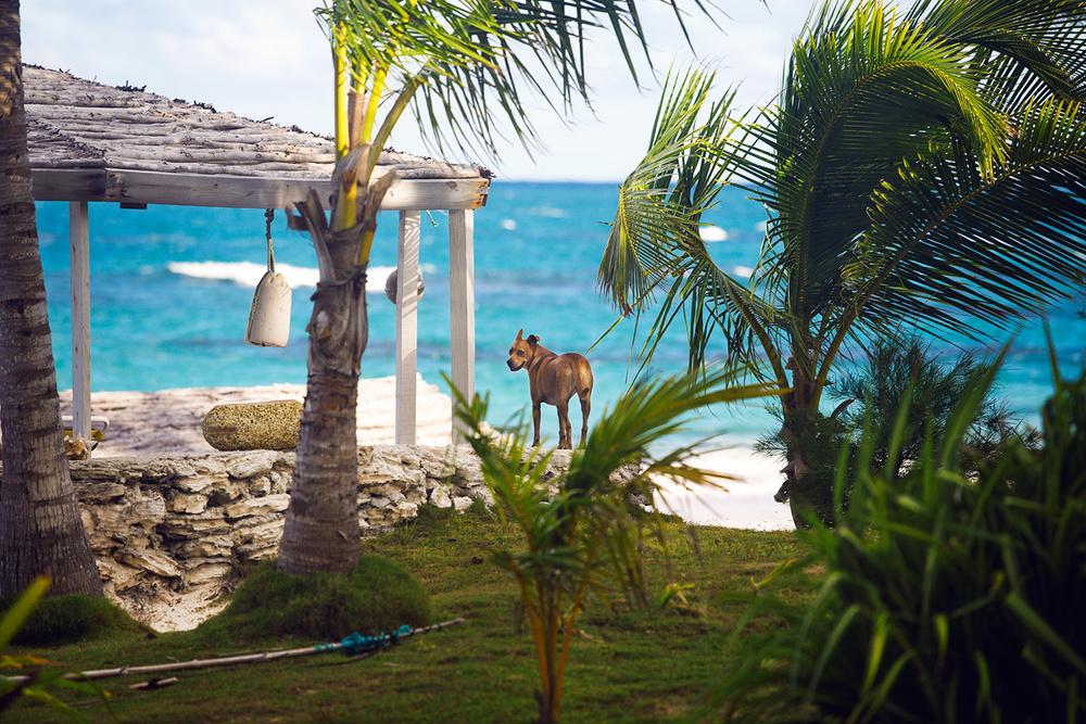 Bahamas_009.jpg