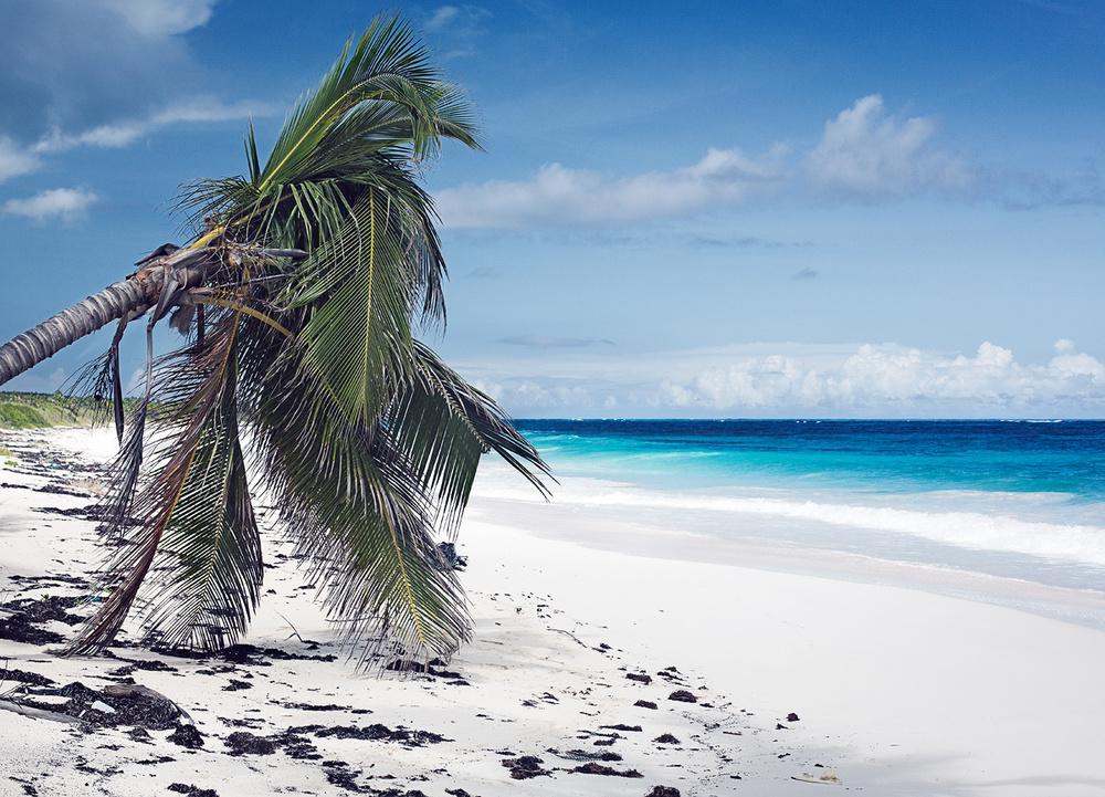 Bahamas_017.jpg