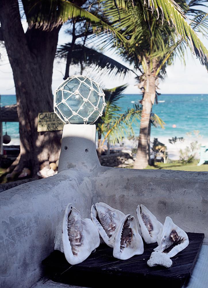 Bahamas_020.jpg