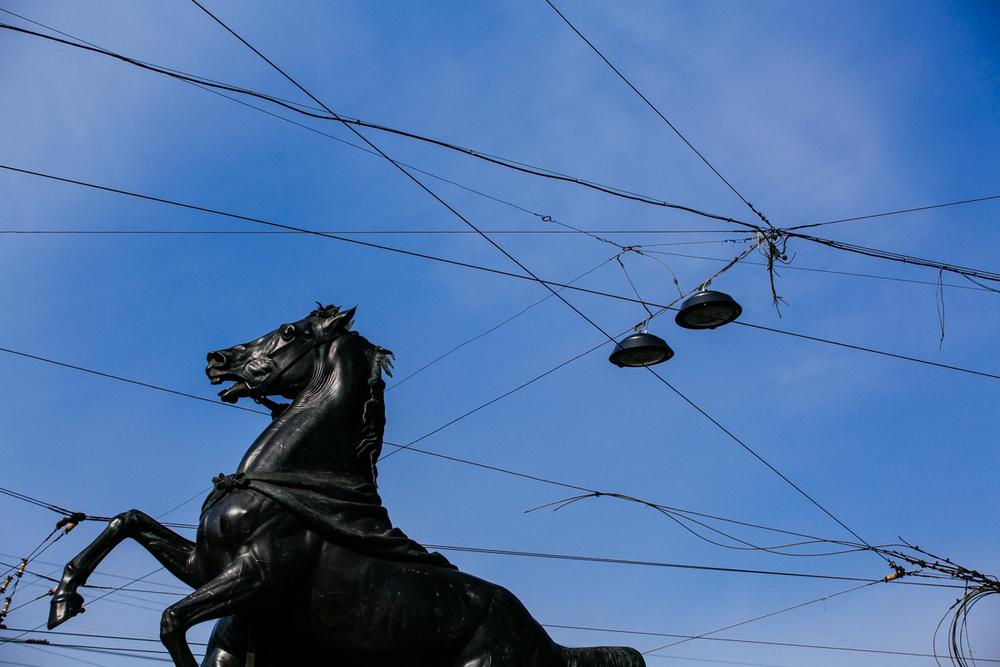 One of four horses onAnichkov Bridge