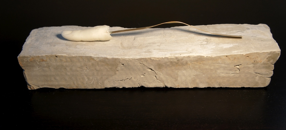 Castration Anxiety , 2014. Wax, brass, concrete. 1.75 x 11.75 x 3 in.