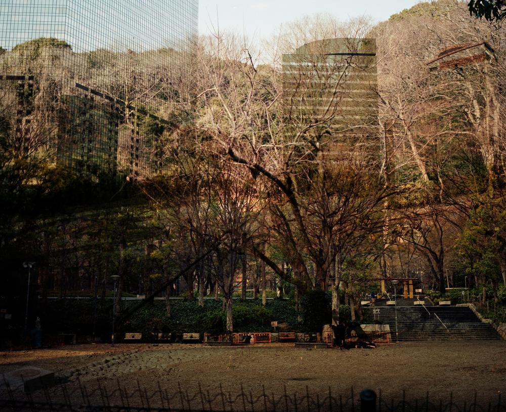 jap2013136.jpg
