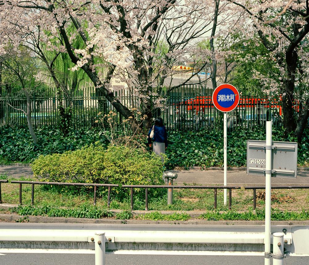 street 16.jpg