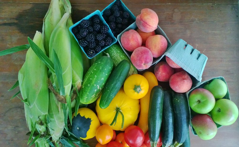 August full fruit and vegetable share.  Photo by Tracey Pearson, Paige's CSA Member