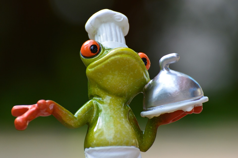 pixa bay frog-927768_960_720.jpg