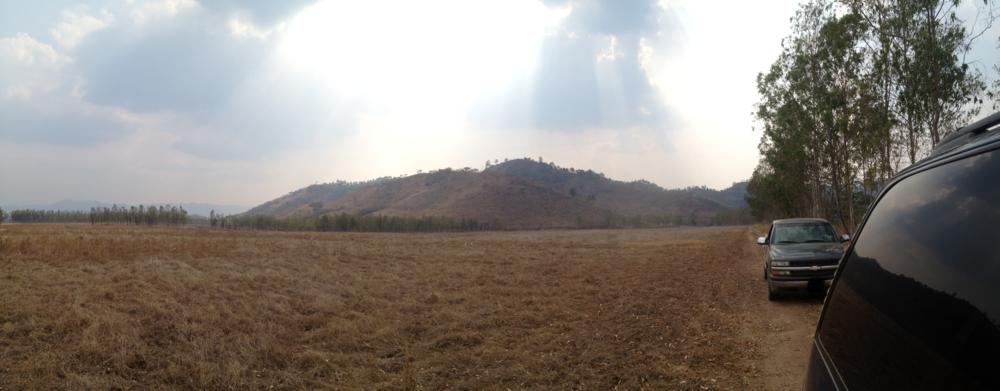 The Corojo fields in Honduras