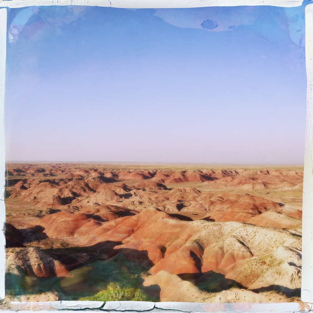 The Painted Desert on the north end of the park.
