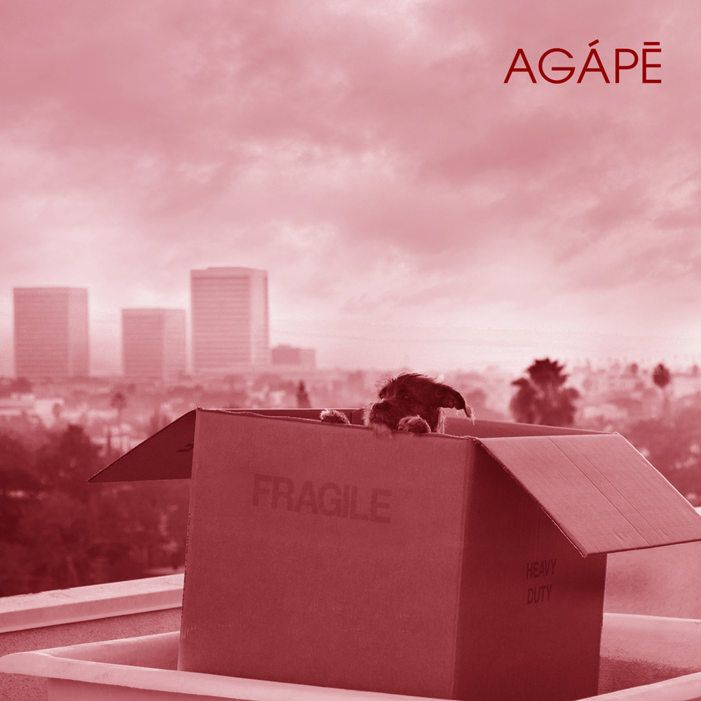 AGAPECOVER.jpg