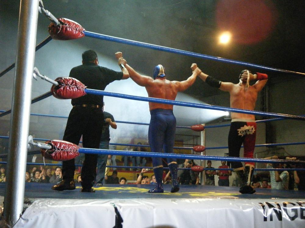 wrestling-432393_1920.jpg