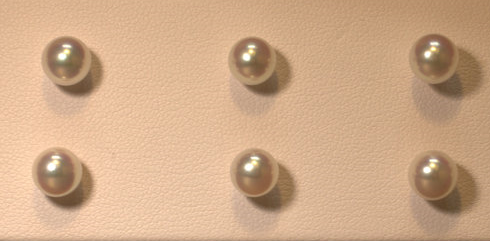 Pearl Stud Earrings make the perfect gift!