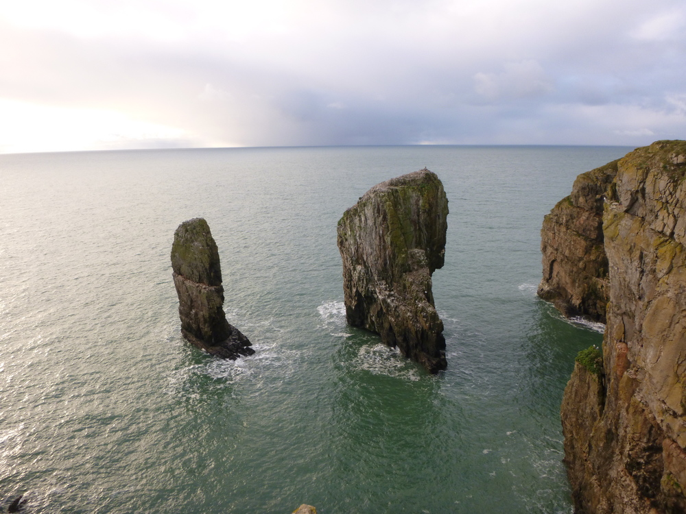 Elegug Stacks Pembrokeshire