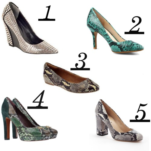 snakeskin shoes st louis personal stylist personal shopper.jpg