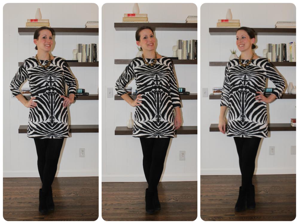 hm zebra dress mindful closet.png