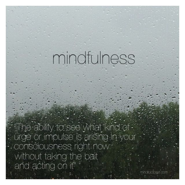 dan harris mindfulness quote - mindful closet