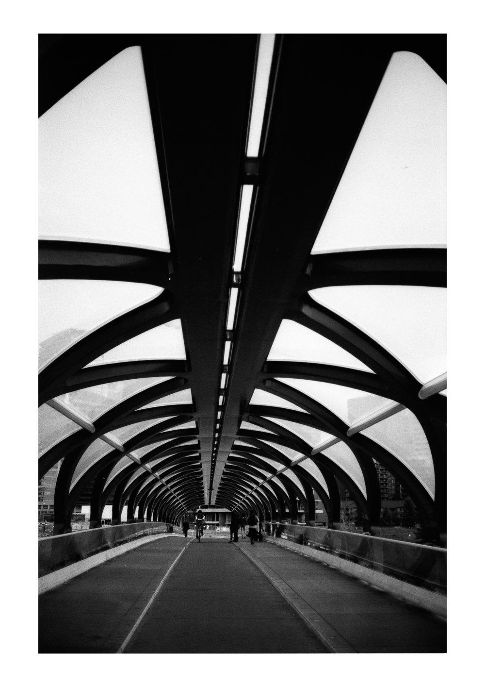 Diamondtimes Calgary Peac Bridge Illford.jpg